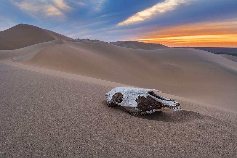 Закат в пескахphoto preview
