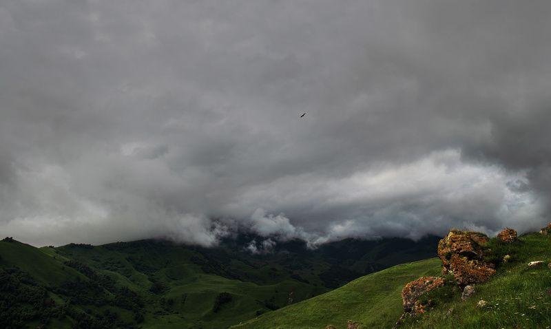кабардино-балкария, кавказ, горы, гроза, орел, тучи, мрачно Как будто в буре есть покойphoto preview