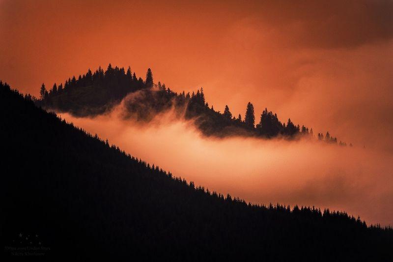 карпаты, рассвет, елки, деревья, силуэты, облака, туман В плену прекрасного мгновенияphoto preview
