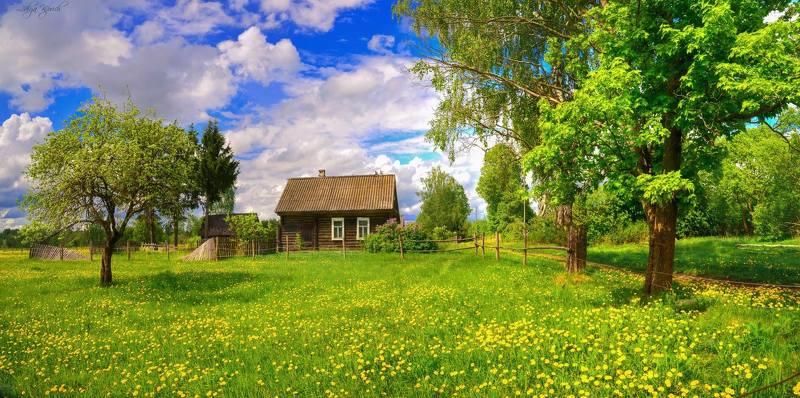 деревенский пейзаж, пейзаж, весна, май, одуванчики, россия, смоленская область, Домик в деревнеphoto preview