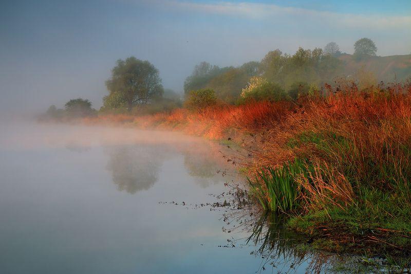 lake, water, fog, sunrise, mood, light, summer, silence, tranquility Sleepy lakephoto preview