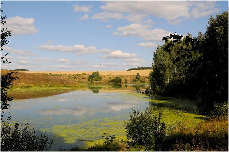 Озеро болото природа Изменившееся озероphoto preview