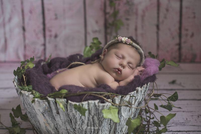 newborn, girl, session, sleep Michalinkaphoto preview
