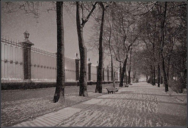 петербург, летний сад, ограда, вечер, снег, дорога Зимний Летний садphoto preview
