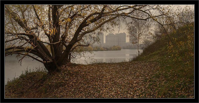 москва строгино парк Городской пейзаж.photo preview