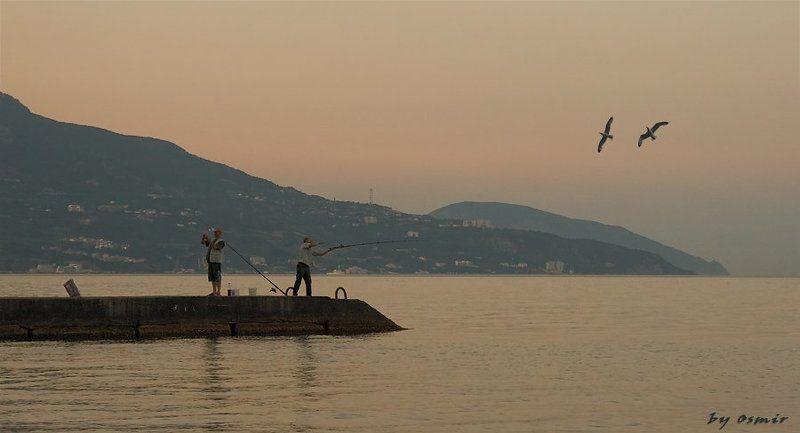 лето, крым, море, рыбалка, чайки, отпуск Дирижер и чайкиphoto preview