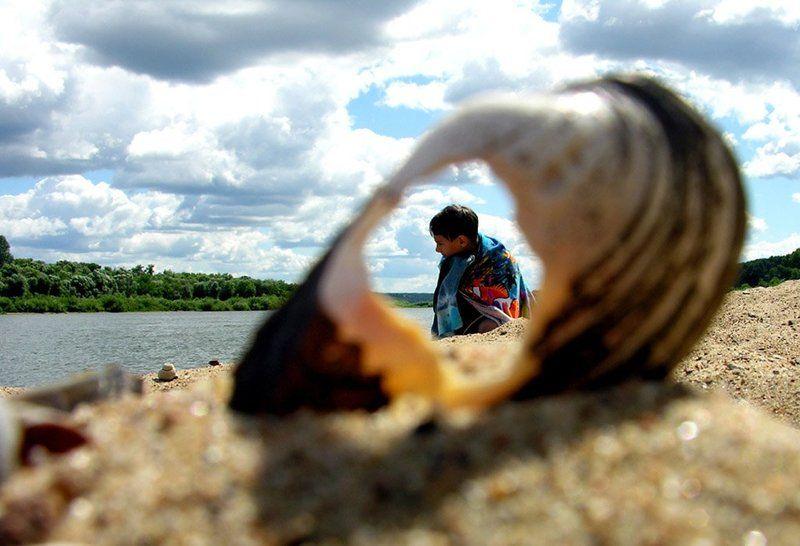 река, ракушка, лето,облака через ракушкуphoto preview