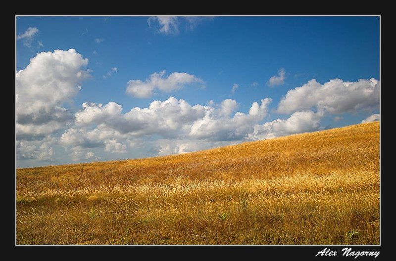 пейзаж, поле, небо, облака, український, прапор, хмари Український прапорphoto preview