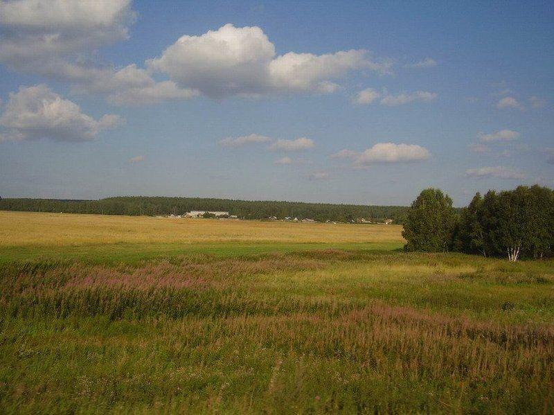лето, поле Поле... русское полеphoto preview