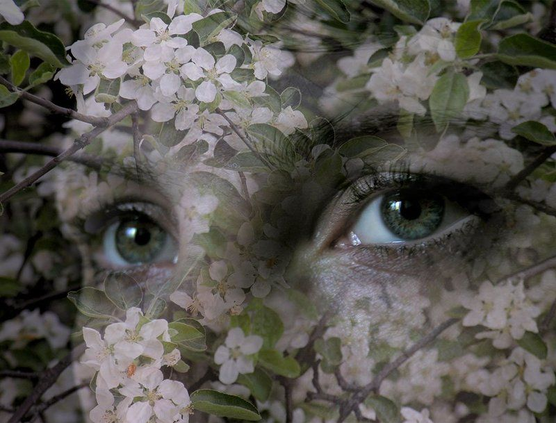 глаза, весна, девушка,взгляд взгляд весныphoto preview