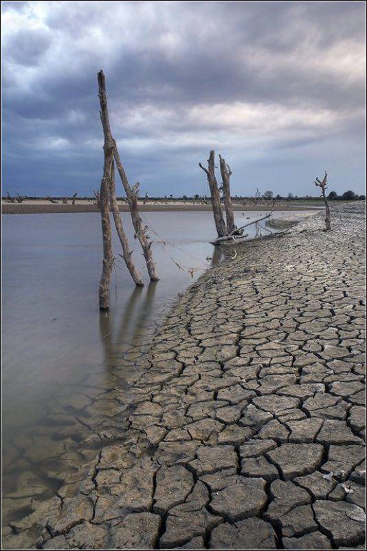 река, псекупс, северный, кавказ, засуха Обнажение IIphoto preview