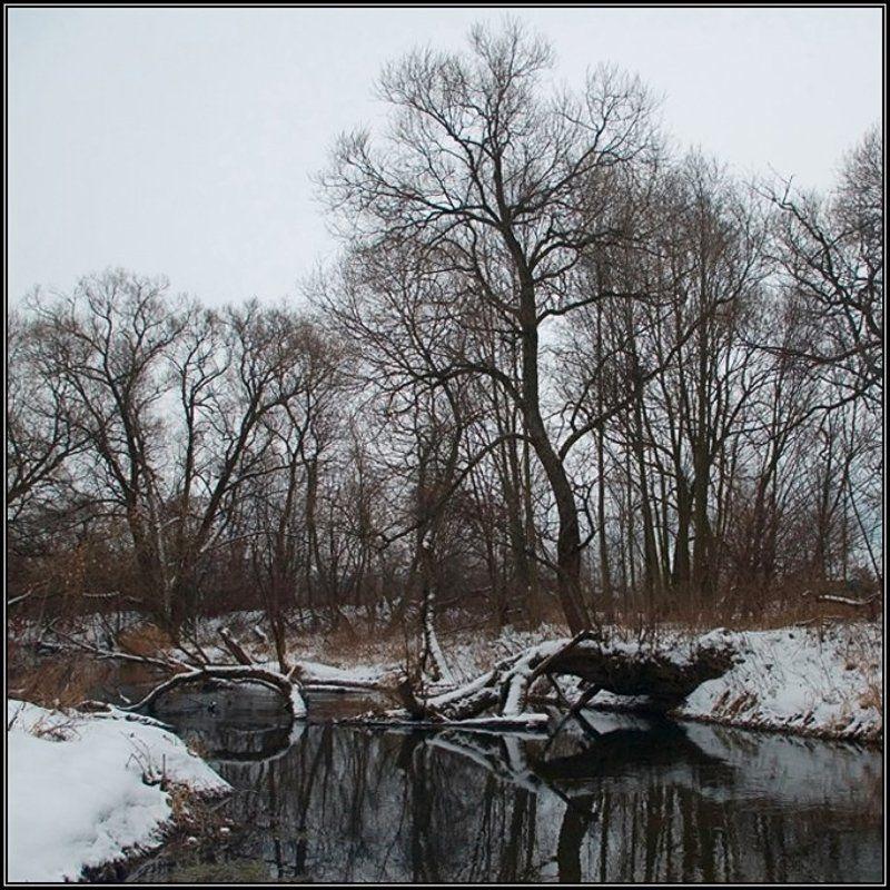 зима, река, отражение Чёрно-бело-рыжий пейзажphoto preview
