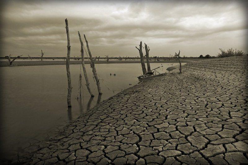 река, псекупс, засуха, северный, кавказ, адыгея Когда долго не идут дожди...photo preview