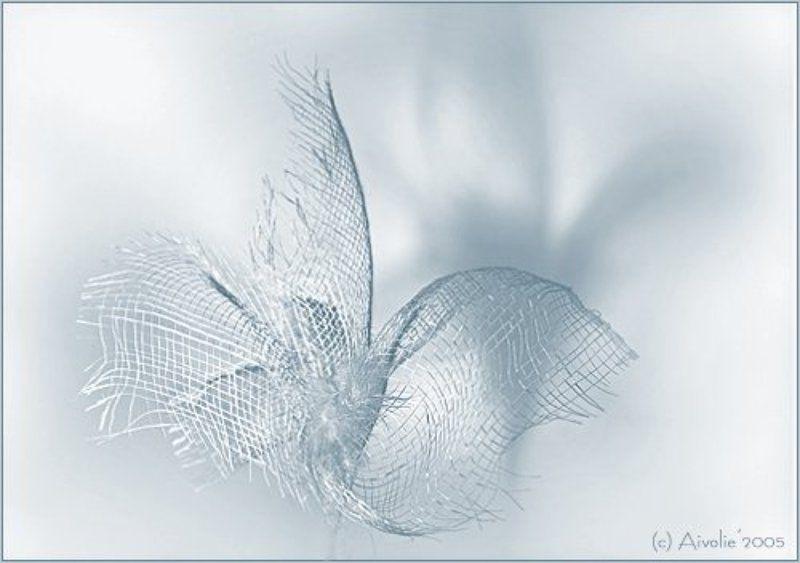 цветок сеточка лепесток перышко ***photo preview