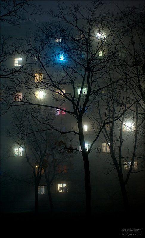 fog, туман photo preview