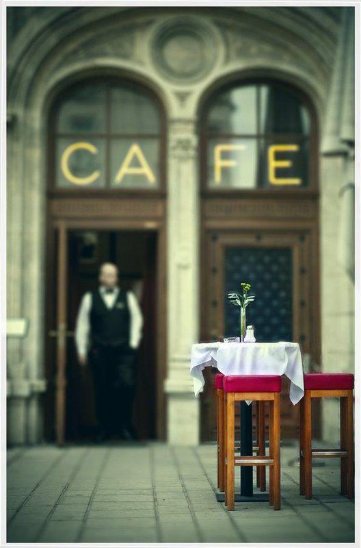 вена, кафе, официант photo preview