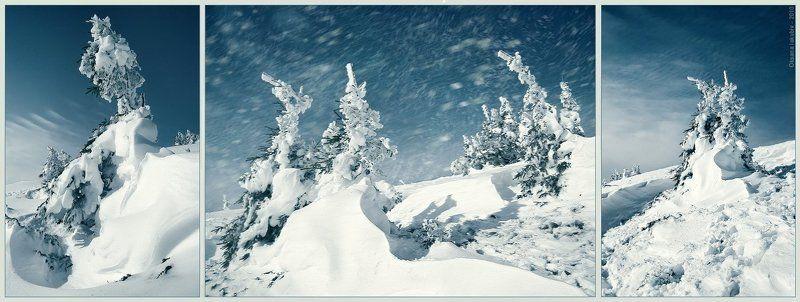 карпаты, зима, осень photo preview