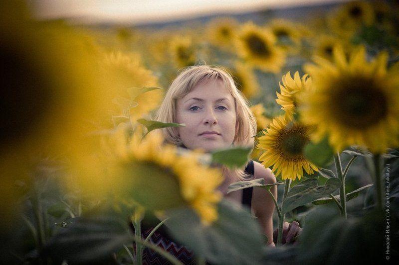 подсолнухи, поле, природа, портрет, девушка photo preview