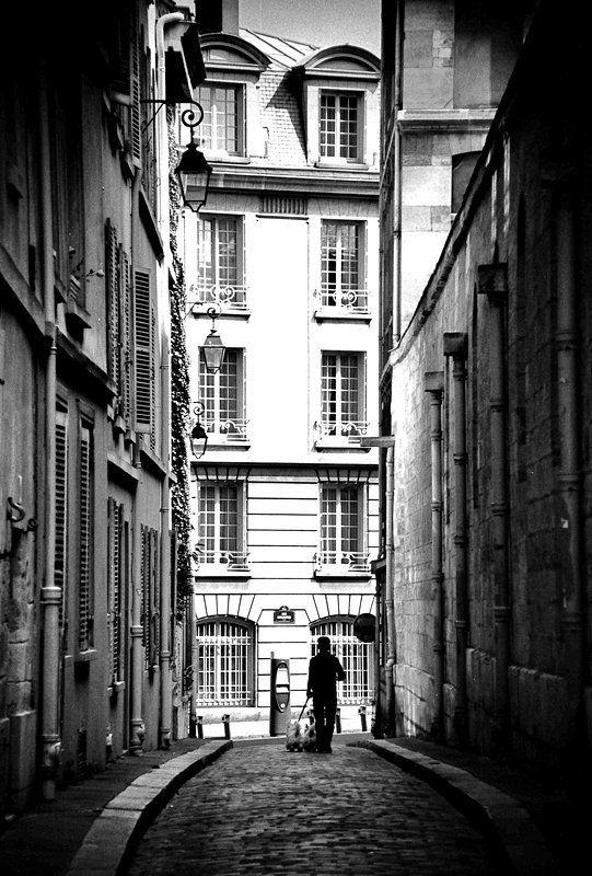париж photo preview