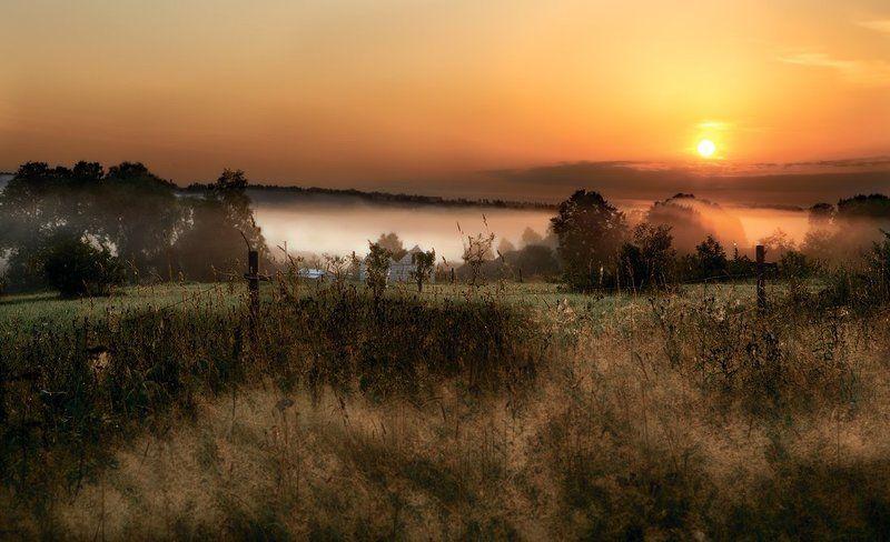 туман, рассвет, восход, деревня, трава photo preview
