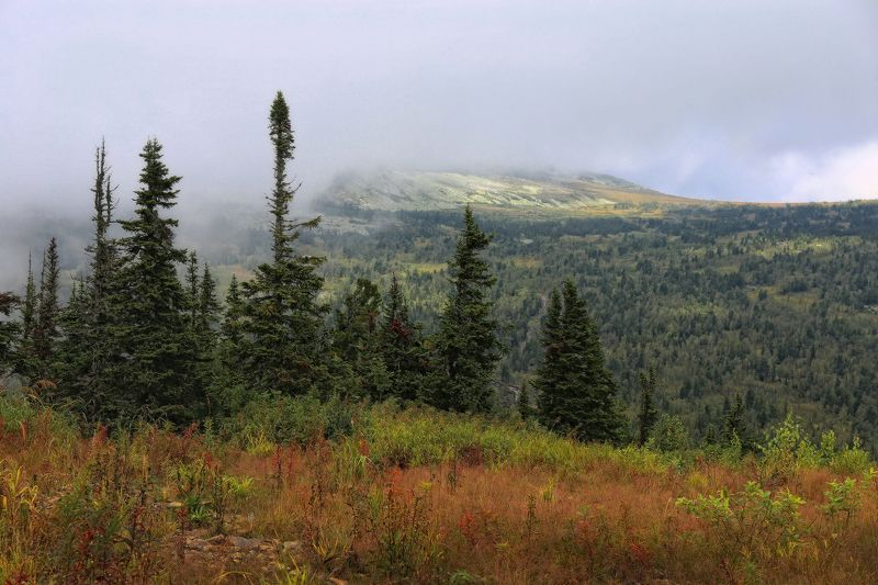 горная шория, сибирь, шерегеш Август в Горной Шорииphoto preview