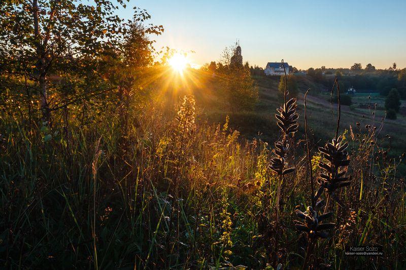 россия, радонеж, поле, травы, люпин, рассвет, силуэт, солнечные лучи Разнотравьеphoto preview