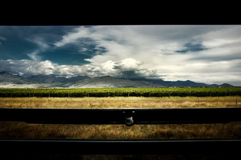montenegro, wine, grape, mountains, travel, clouds, train, fields, plantations, черногория, вино, виноград, горы, путешествия, облака, поезд, поля, плантации, Back homephoto preview