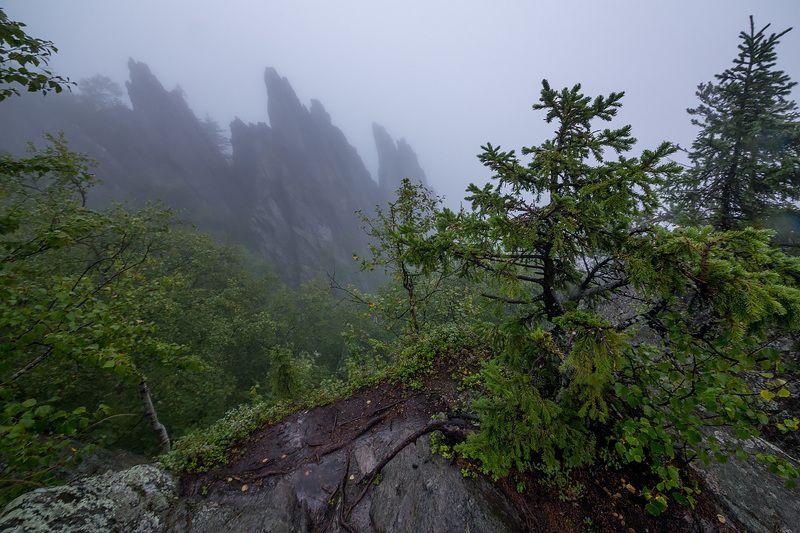 Туман на Таганаеphoto preview