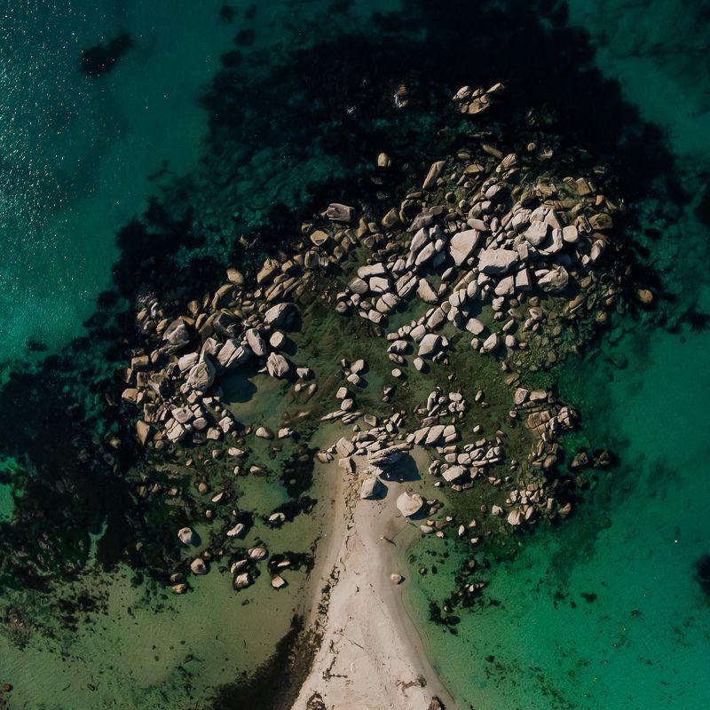 приморье, триозерье, море, камни, дерево Дерево летаphoto preview