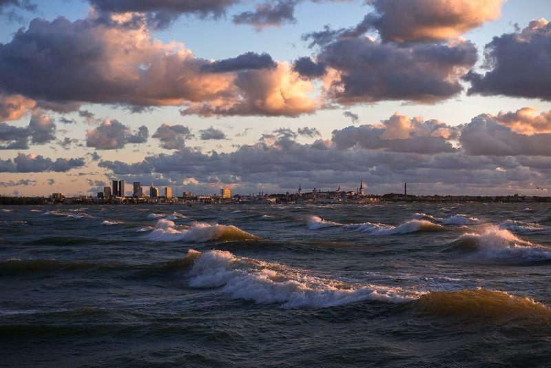 пейзаж, таллин, эстония, море, закат, путешествия Таллинphoto preview
