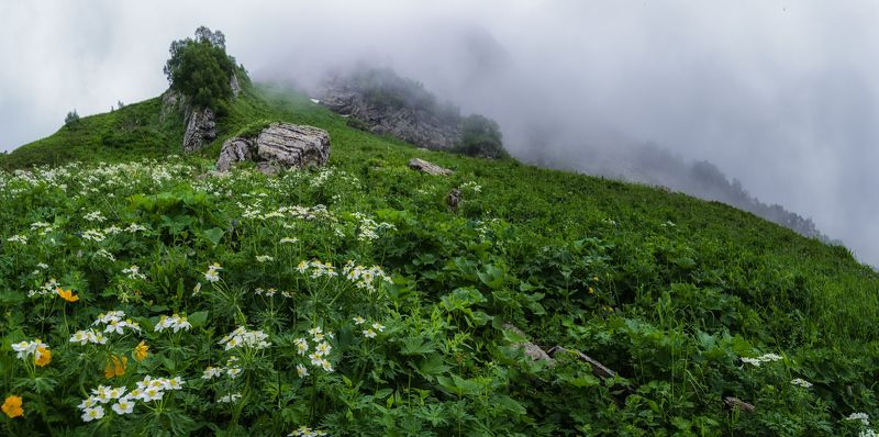 В туманах гор Кавказаphoto preview
