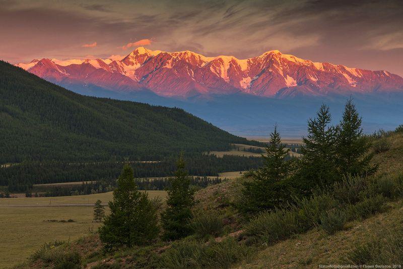 алтай, курай, северо-чуйский хребет, рассвет, степь, горы, сибирь Огненная рассветнаяphoto preview
