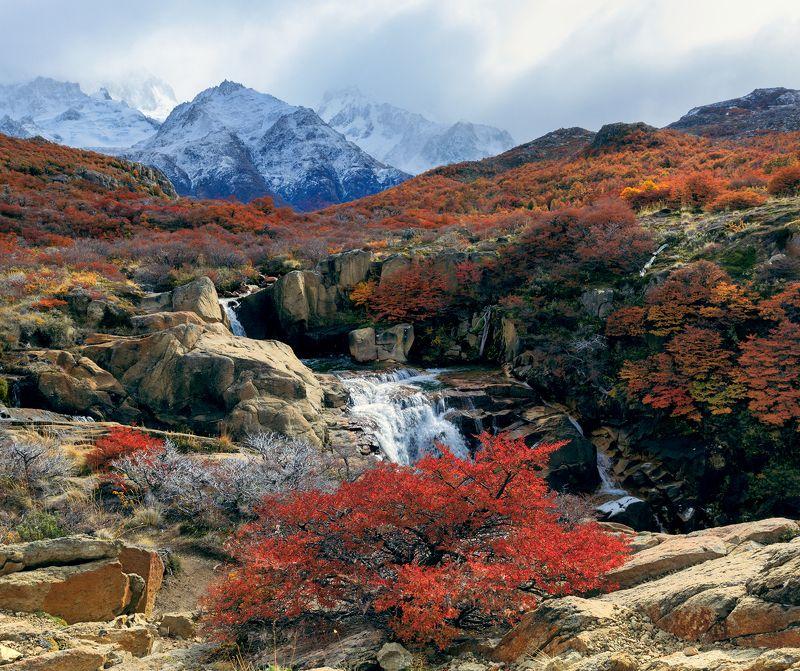Los Glaciares National Park, autumn, mountains range, Argentina, waterfall  Цветы осени. Национальный парк Лос-Гласьярес. Санта-Крусphoto preview