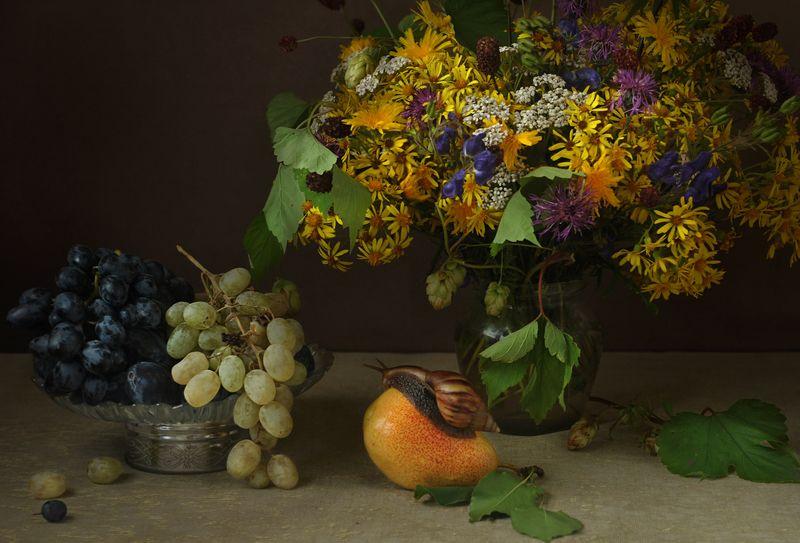 улитка цветы фрукты ***photo preview