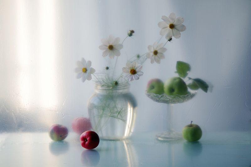 осень,цветы,натюрморт,в.павлухина, Тепло осениphoto preview