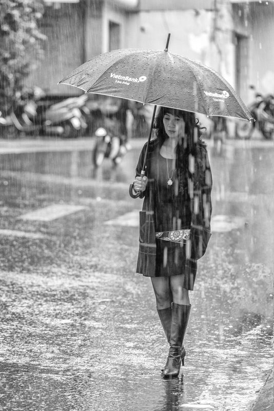 the rain pm dalat vietnam  IN THE RAINphoto preview