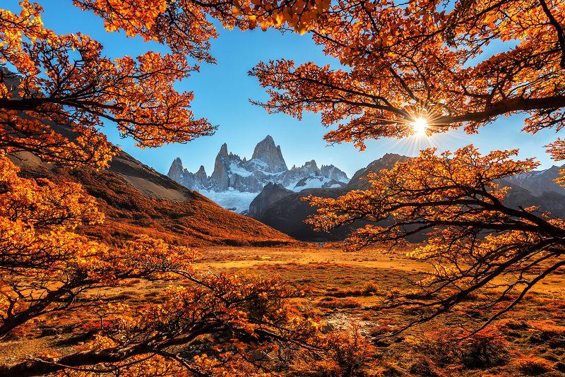 В осеннем окружении/Surrounded by autumnphoto preview