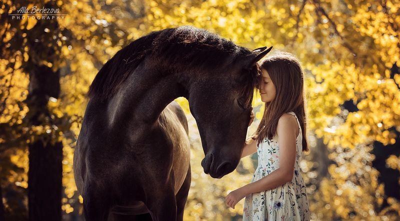 лошадь, horse, девочка, girl осеньphoto preview