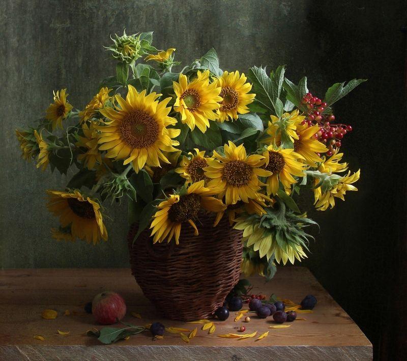 натюрморт, цветы, марина филатова, подсолнухи, яблоки Подсолнухи с калиной и сливамиphoto preview