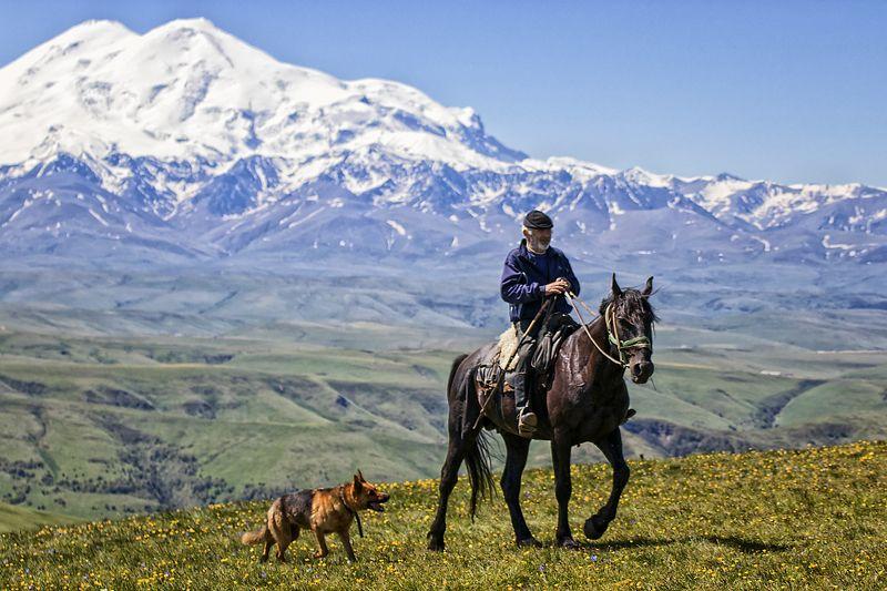 кавказ,пастух,лошадь,собака,эльбрус. Пастух или два Эльбруса.photo preview