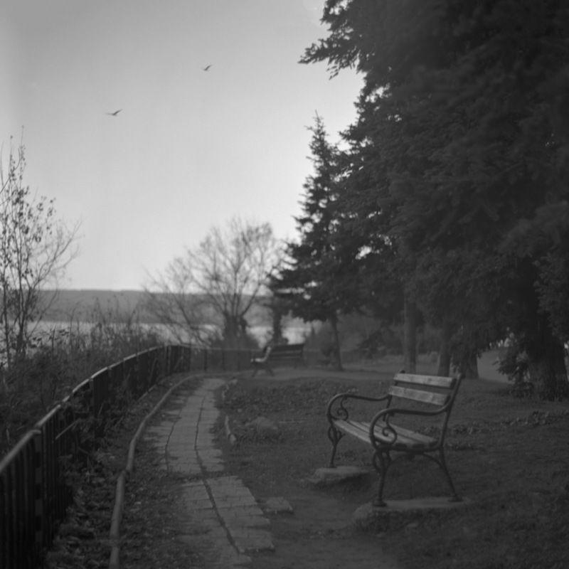 medium, format, 6x6, black, &, white, b&w, park, noir Benchphoto preview
