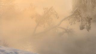 Растворяясь в утреннем тумане