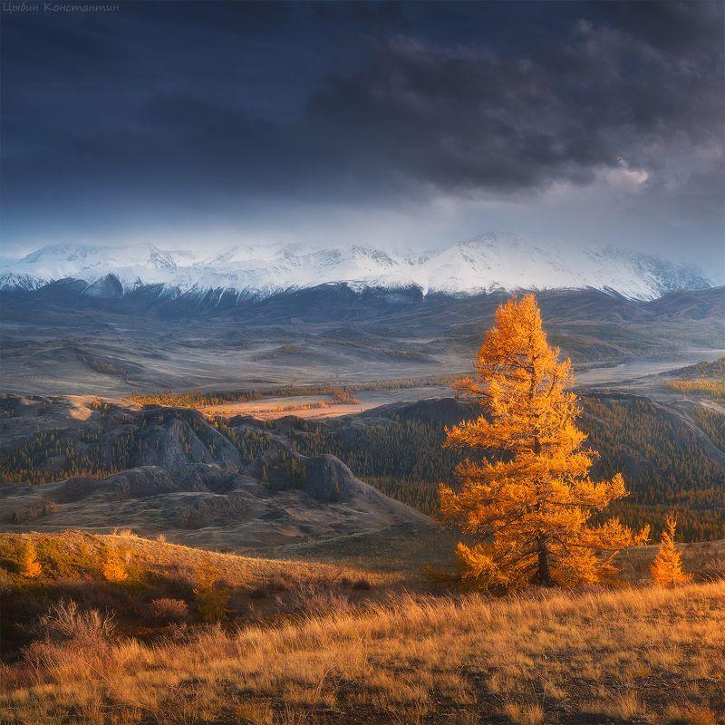 Алтай, Курай, Чуя, горы, осень Алтай. Осень в курайской степи.photo preview
