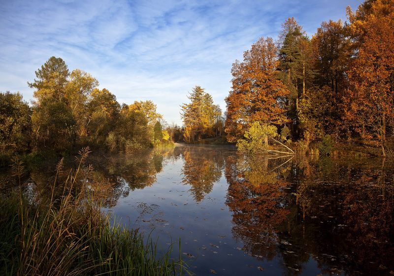 осень, парк, листва, пруд Петербуржская осеньphoto preview