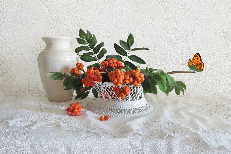 рябина,ваза,бабочка,салфетка Рябинаphoto preview