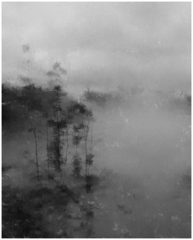 Туман на озере.photo preview