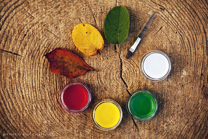 autumn, september, leafs, paint, draw, background, circle, wooden, tree, forest, , листья, осень, палитра *photo preview