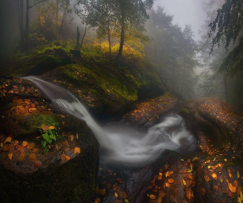 Осень в Болгарииphoto preview