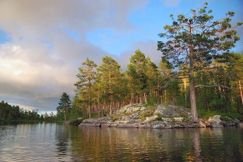 карелия, озеро, сосны, камни На озере Керетьphoto preview