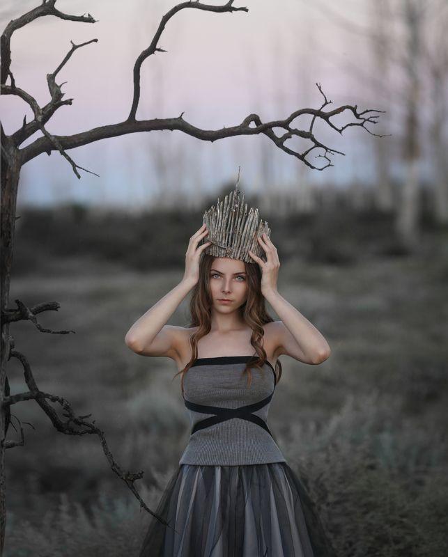 мертвый лес, сухие деревья, мертвые деревья Королева мертвого лесаphoto preview